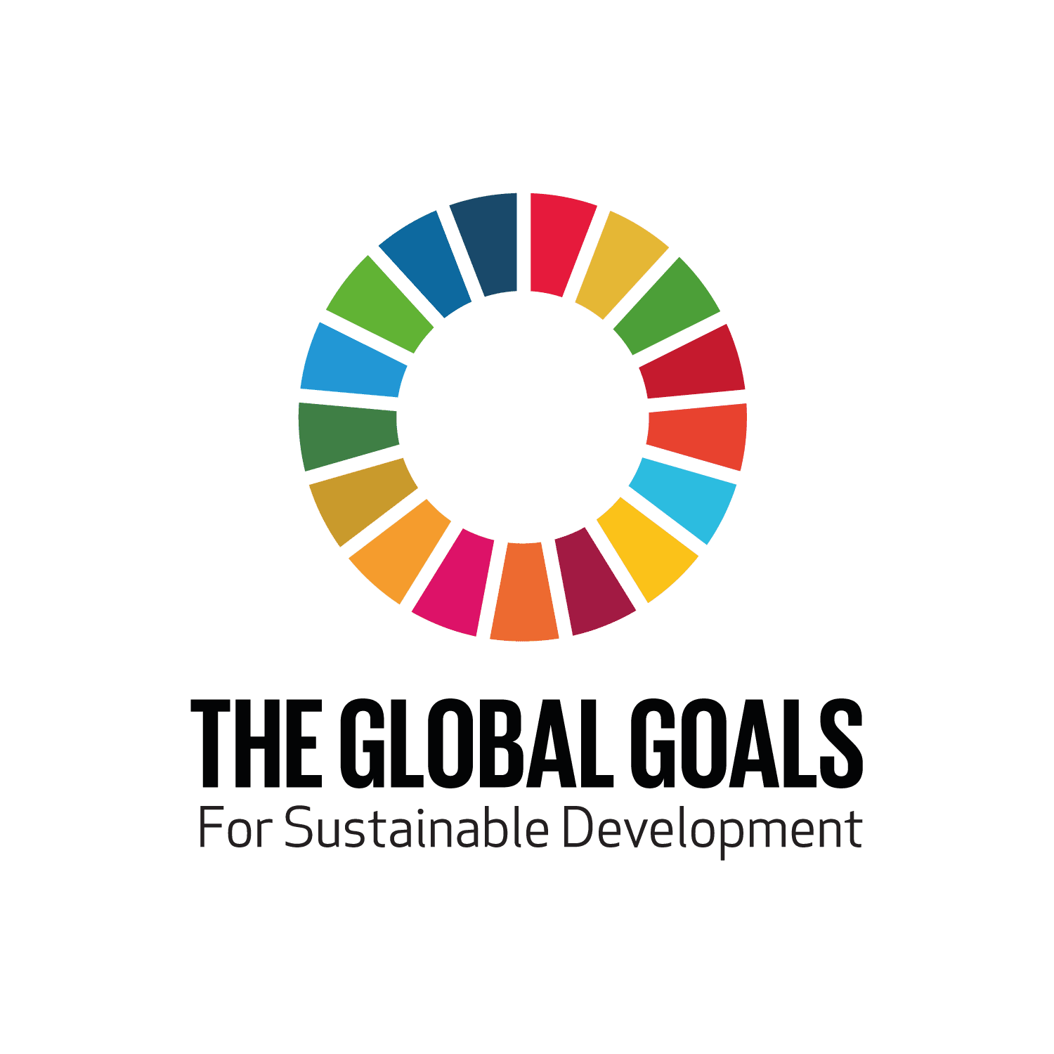 2018 Whole School STEAM Project – Global Goals