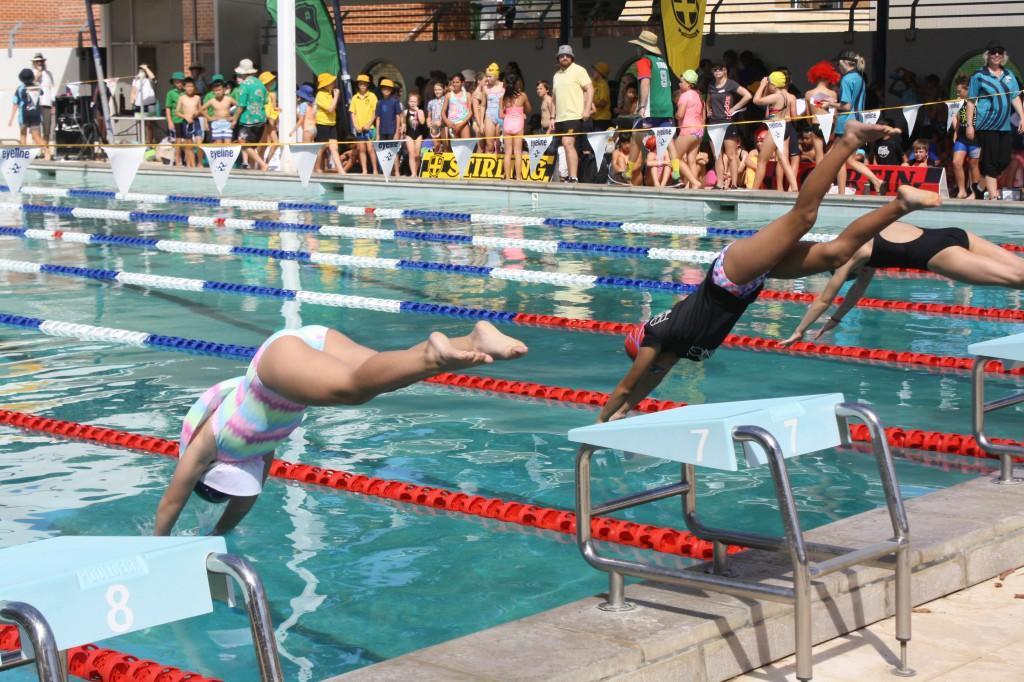 2018 Swimming Carnival