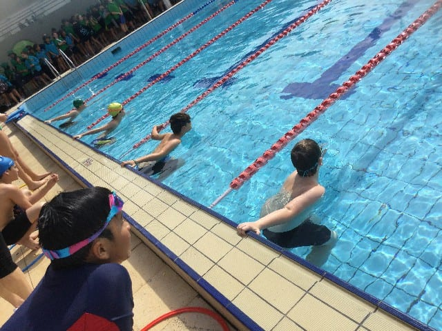 2021 Swimming Carnival & Sports News